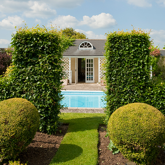 Dive into our selection of swimming pools for Garden plunge pool uk