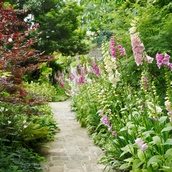Lovely 20 Cottage Style Landscaping Ideas To Enhance Your: 5 Country Garden Paths