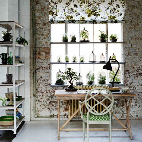Creative Ways To Display Plants Indoors