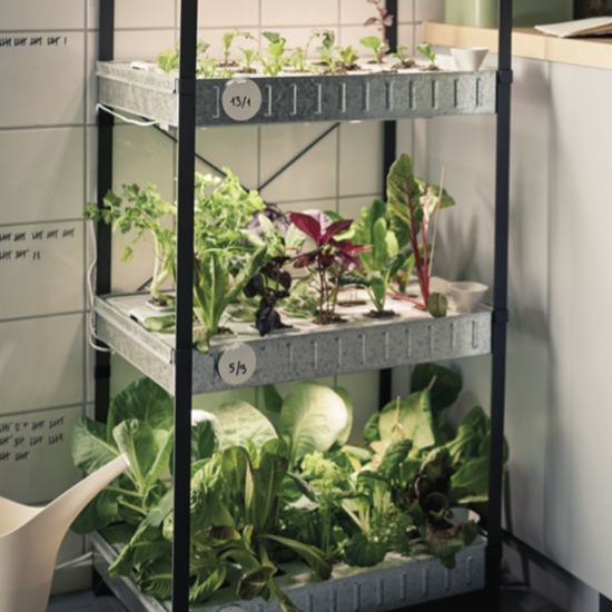 Ikea Launches Hydroponic Indoor Gardening Kit