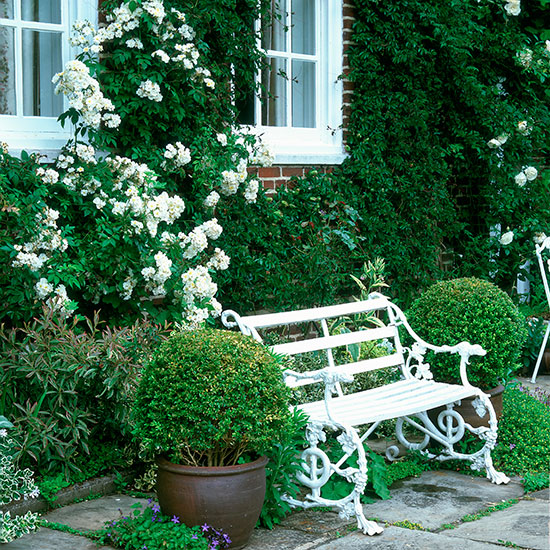 Romantic Garden Design: Design Your Own Romantic English Rose Garden